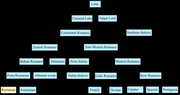 Wel Latijn bovenaan de verzameling Romaanse talen, Roemeens staat onderaan.